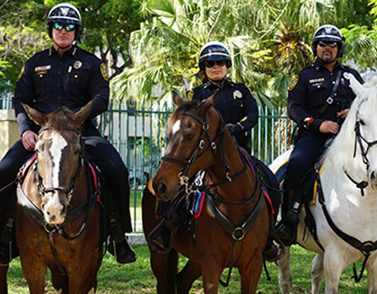 Three officers on horses